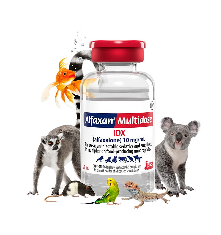 Alfaxan Multidose